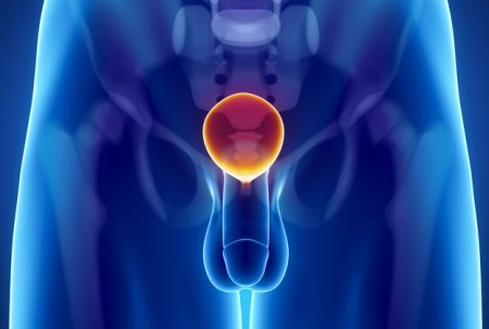 泌尿器科で定期検査を受診
