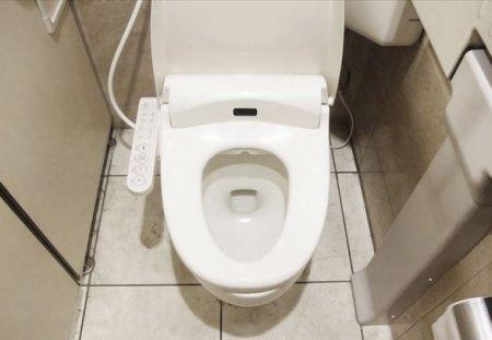 自宅のトイレでできる検査